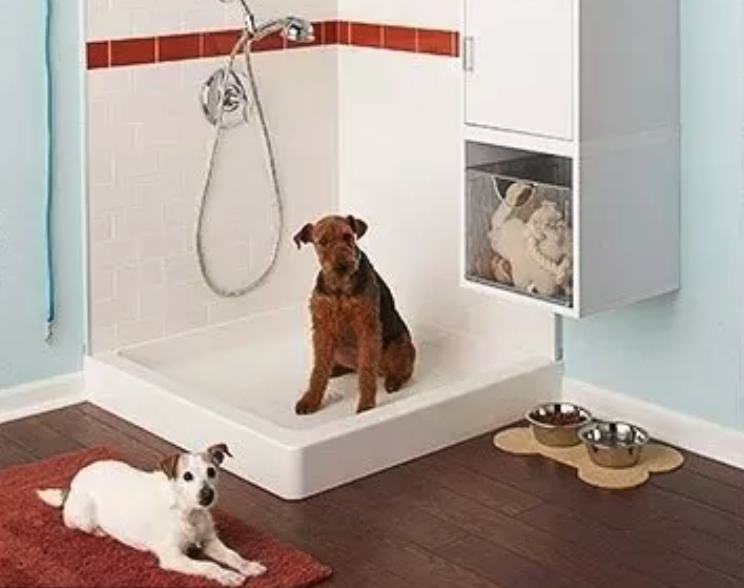 mud room pet spa and other unique home renovations